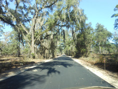 West-Lake-Road-Jefferson-County-Florida.