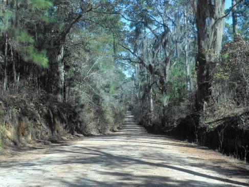 Simpson-Road-Heritage-Roads.jpg