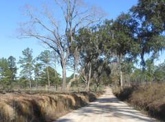 Brock-Road-Heritage-Roads.jpg