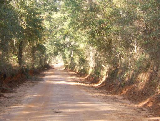 Avalon-Road-Heritage-Roads.jpeg