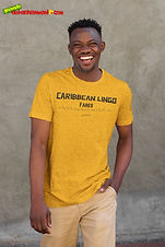 """Ever Wanted To Know The Meaning Behind Some Of Our Caribbean Sayings, Dialect & Patios - Get In The Know & Check Out Our Caribbean Lingo Series By Wearing The Meaning. """"Fares"""" means """"To Pay For Sexual Favors / To Make A Fares / To Visit A Prostitue"""" Thank You For Checking Out Our Official Merchandise for Grenada Entertainment.com"""