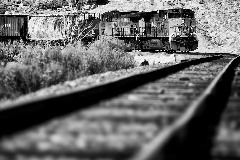 Desert Tracks BW