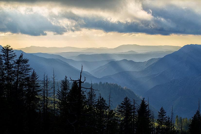 Rays Of Yosemite
