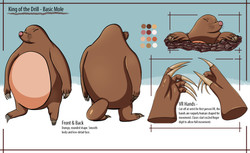 Mole_Model_Sheet