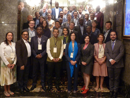 Highlights from the SAFIN Annual Plenary Meeting 2019