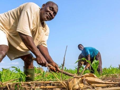 Closing the smallholder financing gap