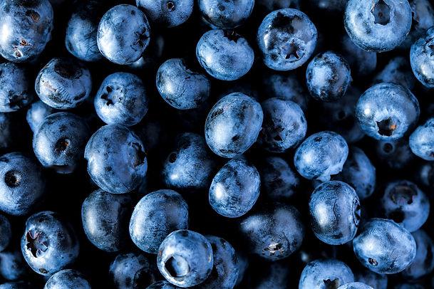 freshly-picked-blueberries-HKZS7B6_low.j