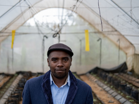 Call for submissions: African investment opportunities for matchmaking at the Agribusiness Deal Room
