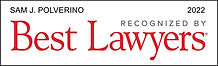 Best Lawyers - Lawyer Logo 2022.png
