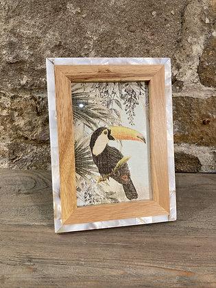 Wood & Shell Frame 6x4