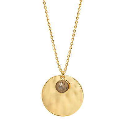 Gold Disk & Labradorite Necklace EB