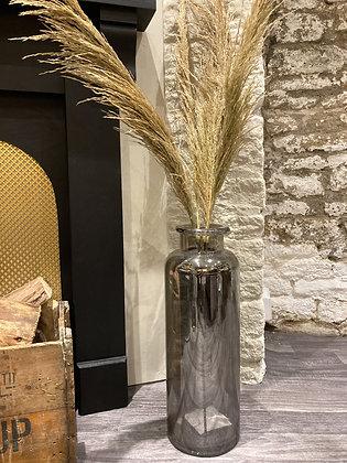 Dried Wheat Stem
