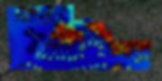 Charleston Elevation Survey