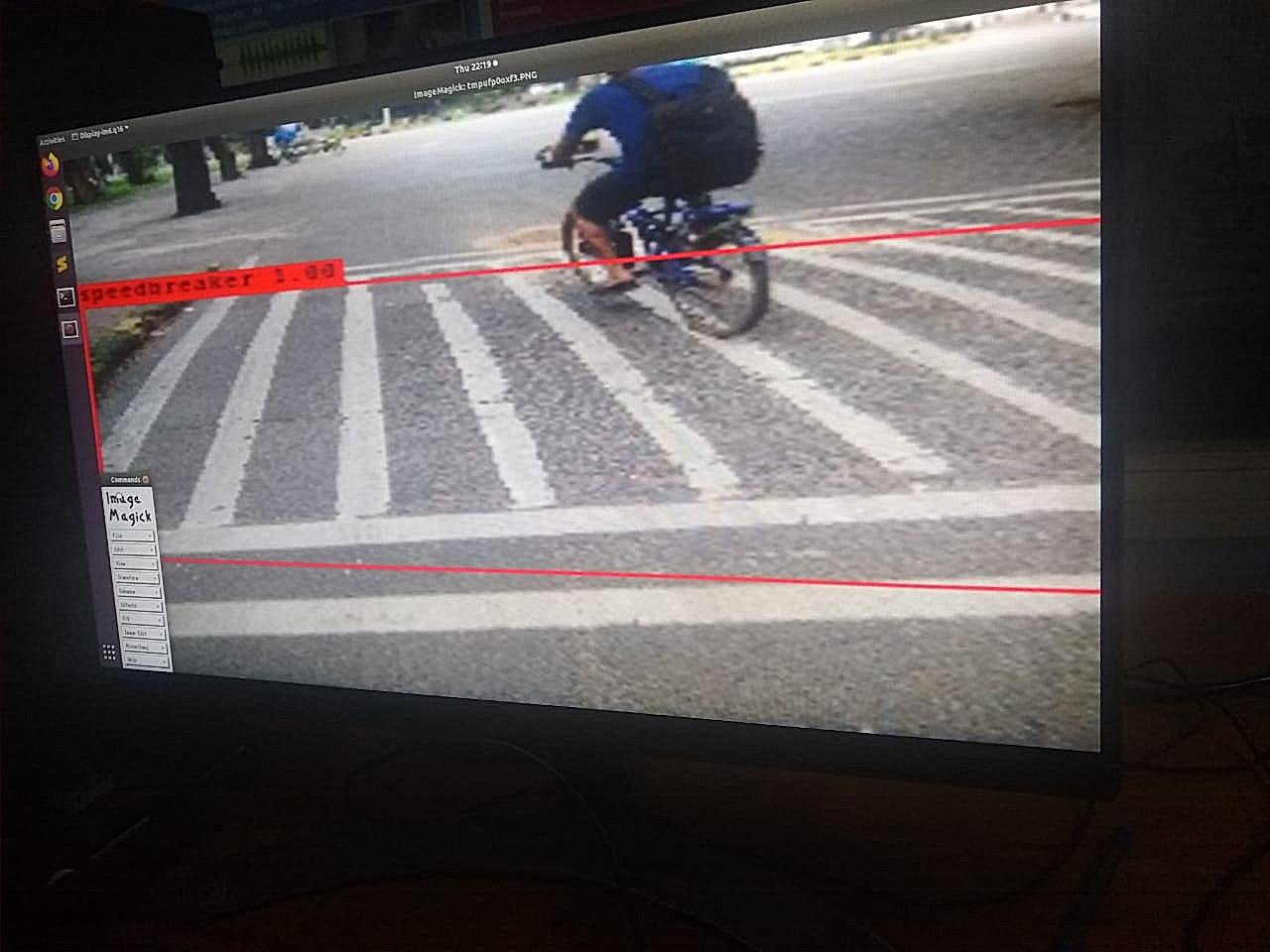 Instance Segmentation - Zebra Crossing
