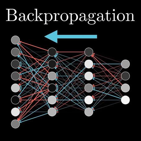 Backpropagation and its Alternatives