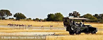 indaba05__safari_jeep_S(1).jpg