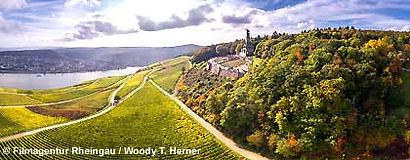 rheingau_ruedesheim_S.jpg