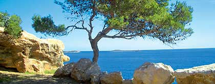 Ibiza_Kueste_S.jpg
