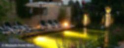 Wunsch-Hotel_Naturpool_S.jpg