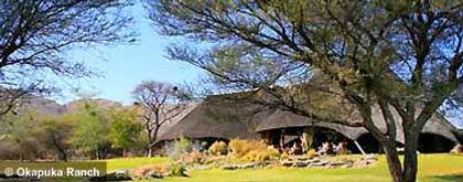 namibia_okapuka-ranch.jpg