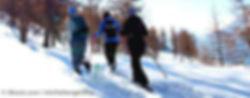 MR_winterspass_S.jpg