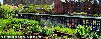 new-york-high-line-park.jpg