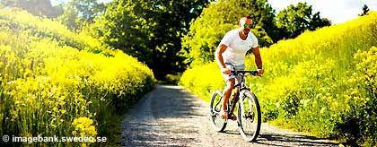 KR_fahrradfahren_gay_S.jpg