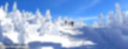 dreisessel_winter2_S(1).jpg
