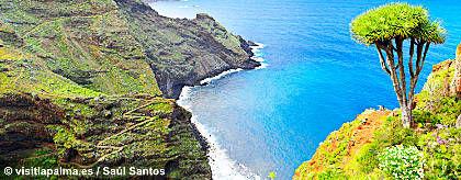 la_isla_bonita_la_palma_S.jpg