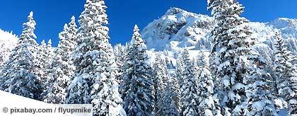 winterlandschaft_S.jpg