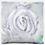 Thumbnail: White Rose