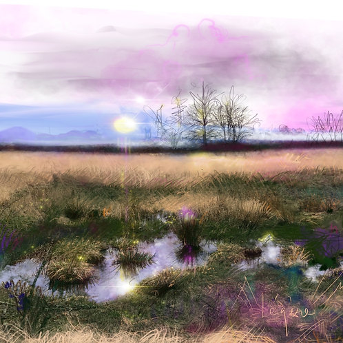 Looking East (Limited Edition Canvas print - 7 handsigned & numbered)