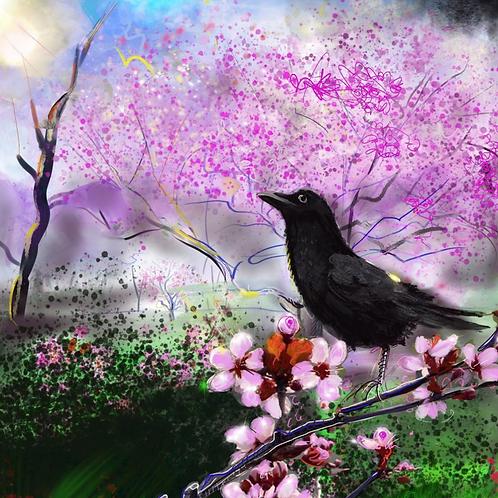 Raven and Cherry