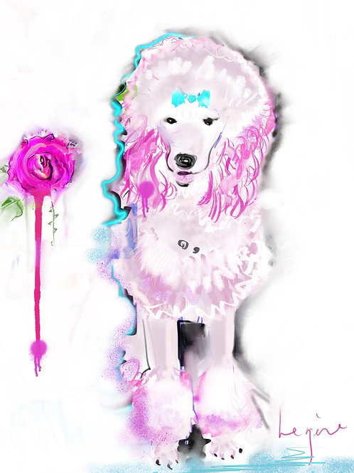 Pink Poodle and Rose (Limited Edition of 7 Print)
