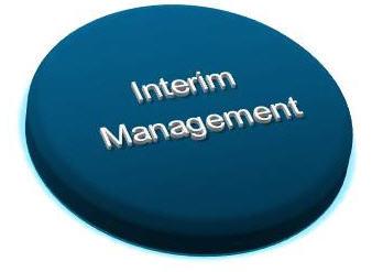 Interim Managers - Explained