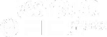 Vestibular FIC 2021.png