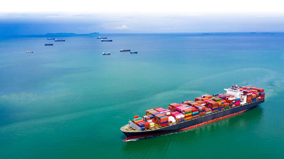 shipping cargo -sea plan from protec mar