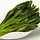 Thumbnail: Tai Ping Hou Kui Green Tea