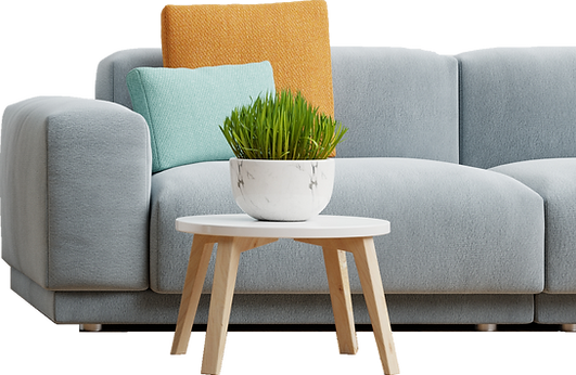 empty-living-room-with-blue-sofa-plants-table-empty-white-wall-background-3d-rendering.png