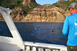 Snorkeling at Jenkins Bay