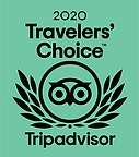 2020 traveler choice by Tripadvisor
