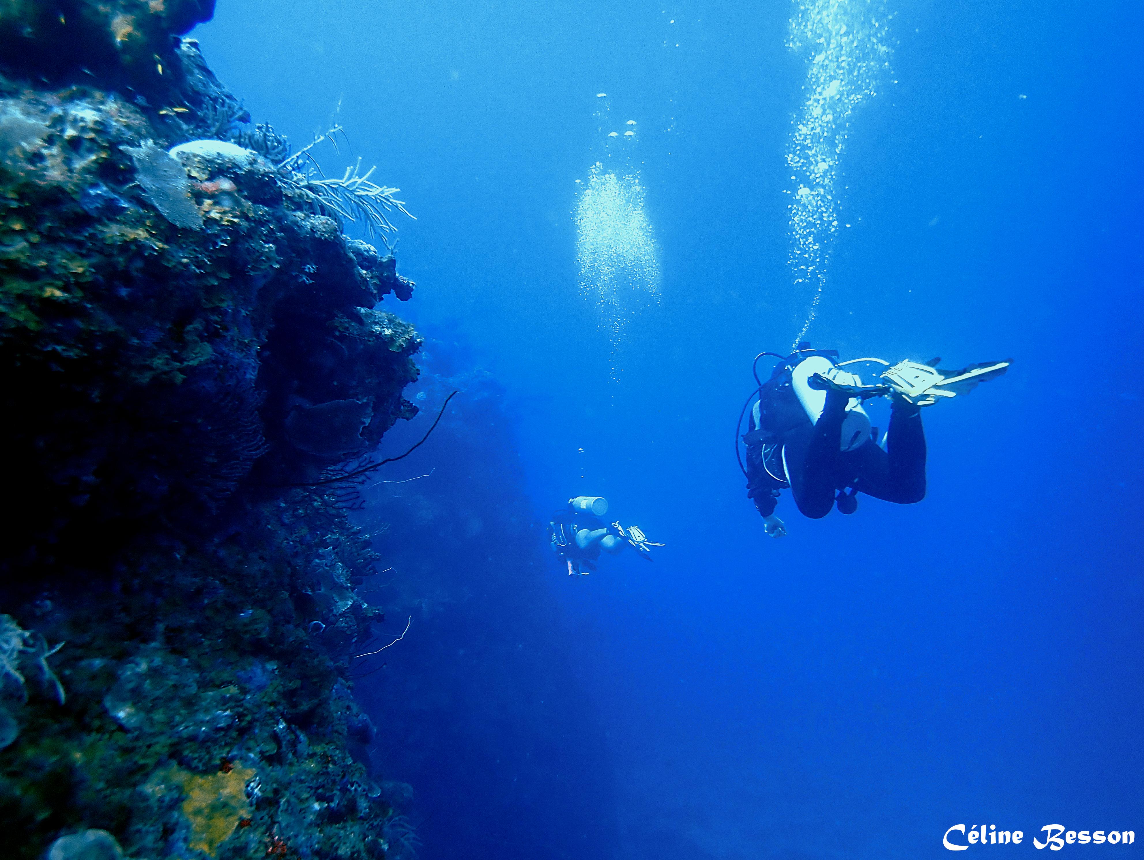 Wall Dive Cliffs