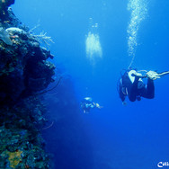 Wall Dive Cliffs.JPG