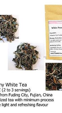 High Quality Loose Leaf Tea Sampler
