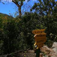 Trail signs 1.jpg