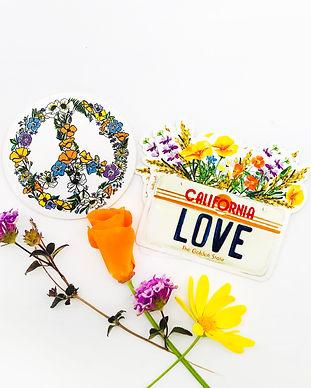 Peace_CaLove_NewStickers_Photo.jpg
