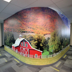Custom Printed Wall Graphic Film