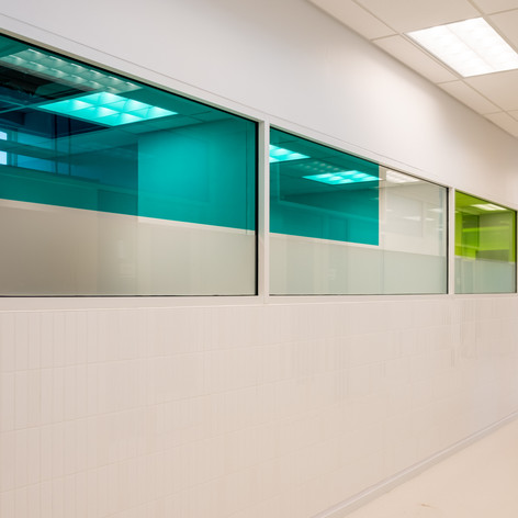 Green Transparent Colourd Film