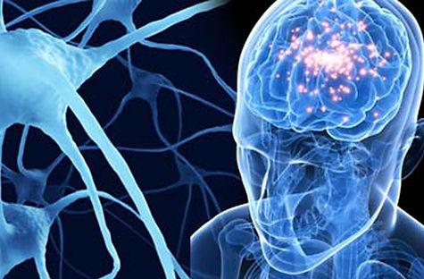 neurologia.jpg