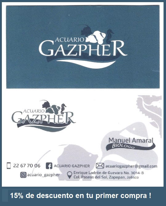 ACUARIO-GAZPHER